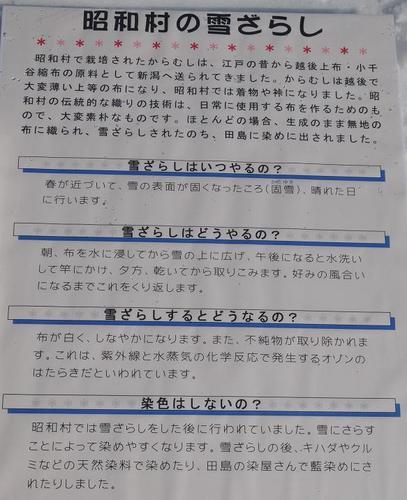 DSC_7048.JPG